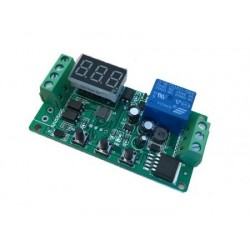Timer Relay 12/24V DC Input at 45mA